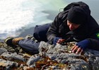 Professor da Uespi de Campo Maior participa de expedição na Antárdida