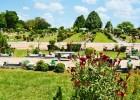 Fanpage do Cemitério Jardim da Ressurreição é sucesso nacional