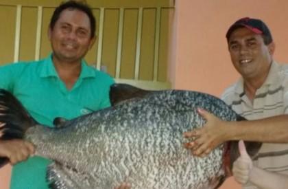 Pescador captura tambaquis de mais de 30Kg em barragem
