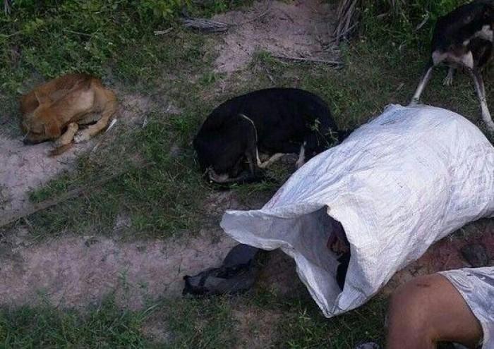 Homem é encontrado morto após sair para caçar