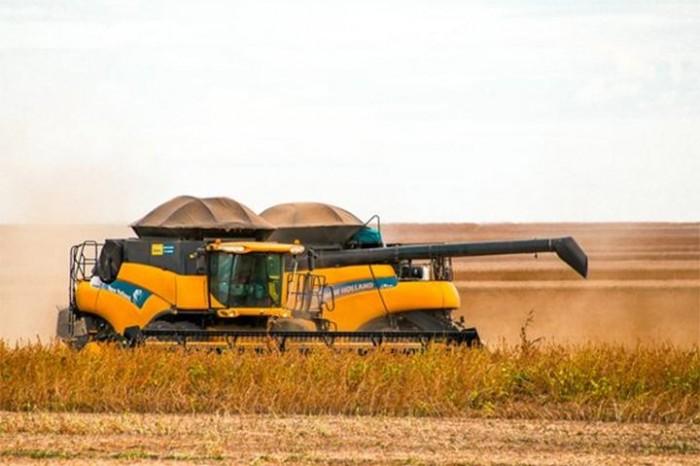 Piauí aumenta produção e alcança safra recorde de grãos