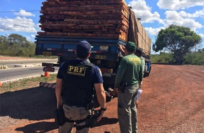 Polícia apreende carga de madeira ilegal na BR-343