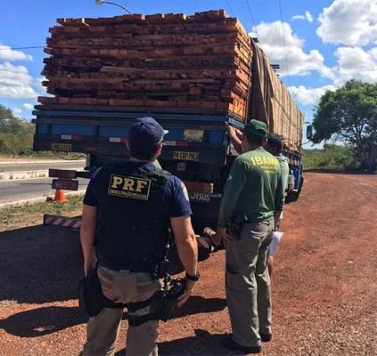 Polícia apreende carga de madeira ilegal na...