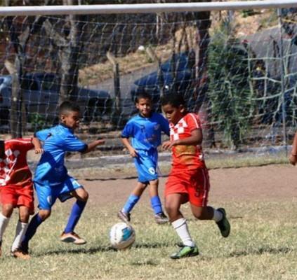 Campeonato Piauiense Sub 11 inicia neste sábado...