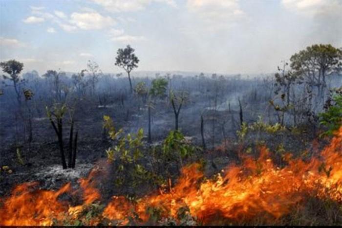 Queimadas e incêndios estão sendo monitoradas diariamente no Piauí