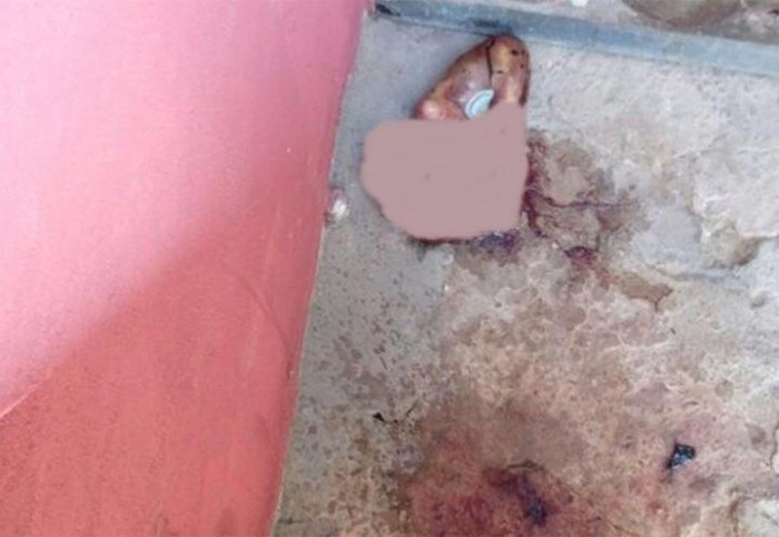 Feto é encontrado em via pública em Timon