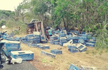 Caminhão carregado de frangos tomba em rodovia no norte do PI