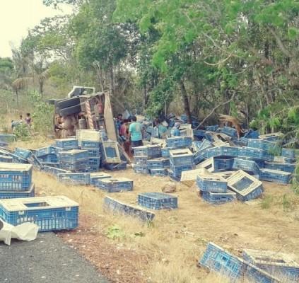 Caminhão carregado de frangos tomba em rodovia...
