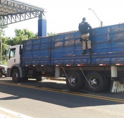 PRF apreende caminhão com madeira ilegal em...