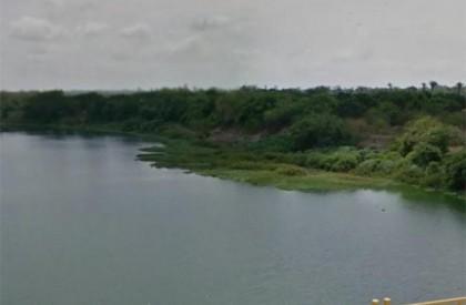 THE: margem do Rio Poti vai receber plantio de 300 mudas de árvores