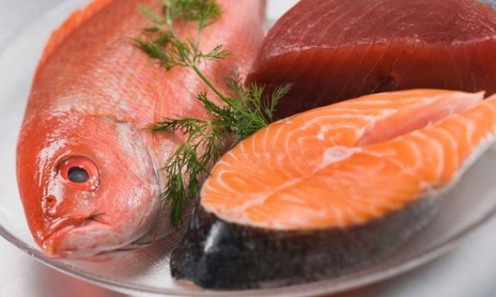 Lei irá estimular consumo de peixe no cardápio escolar