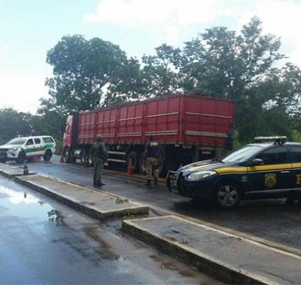 Caminhão com 12 toneladas de madeira ilegal...