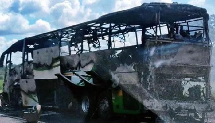 Ônibus incendeia em trecho da BR-343 entre Piripiri e Capitão de Campos
