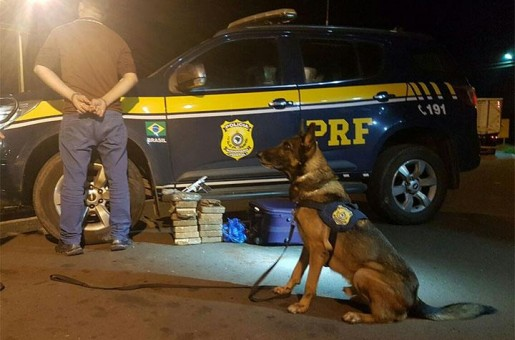 PRF apreende mais de 30 kg de drogas e uma pistola em Picos
