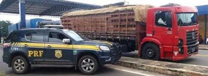 PRF apreende 49 toneladas de madeira irregular em Floriano