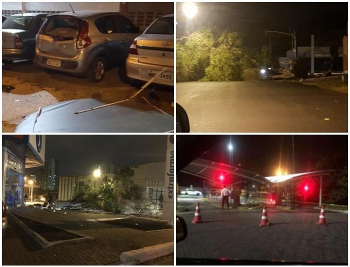 Ventos derrubam placas e árvores e causam prejuízo em Teresina