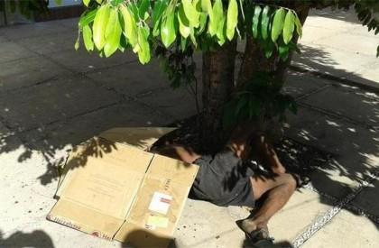 Morador de rua é morto a pauladas em Piripiri