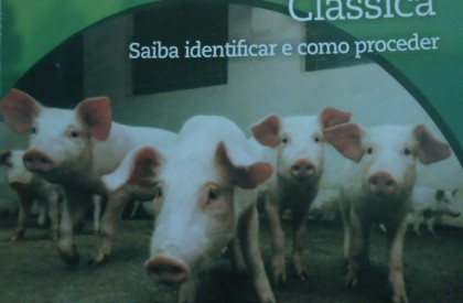 Porcos do CE estão proibidos de serem comercializado em Pedro II e em todo o PI