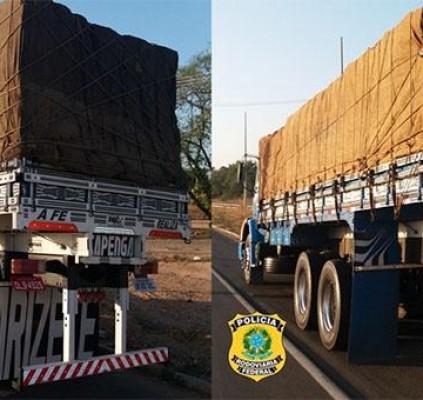 PRF apreende 47 toneladas de madeira sem...