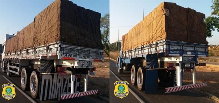 PRF apreende 47 toneladas de madeira sem licença