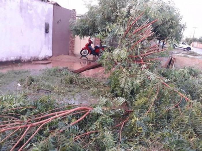 Chuva de granizo e ventos fortes causam destruição em Castelo do Piauí
