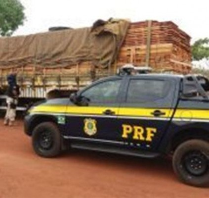 PRF apreende madeira sem licença ambiental ...