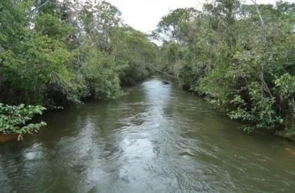 Idoso morre afogado em rio na cidade de Palmeira...
