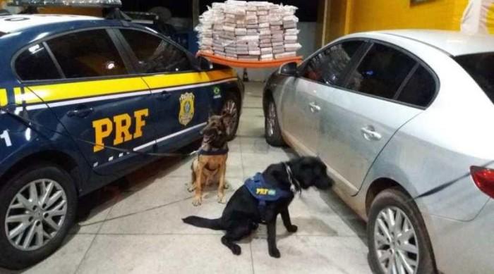 PRF prende homem com 108kg de cocaína na BR-230