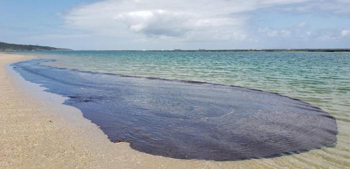 Navio Grego é suspeito do derramamento de óleo no litoral do Nordeste, diz PF
