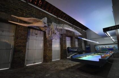 Museu do Mar é inaugurado no Porto das Barcas, em Parnaíba